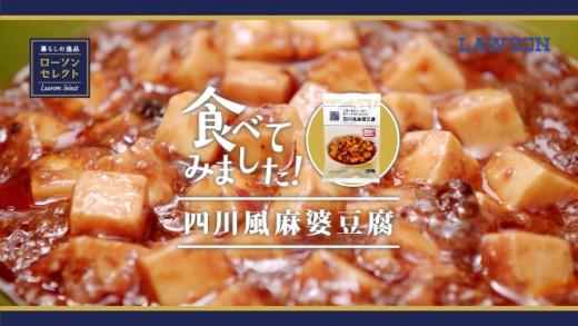 単品CM麻婆豆腐ブログ用サムネイル